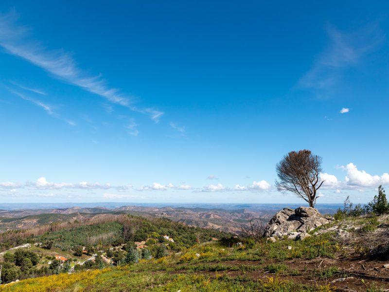 Algarve à la carte 7