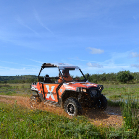 Buggy Adventure Tours 2
