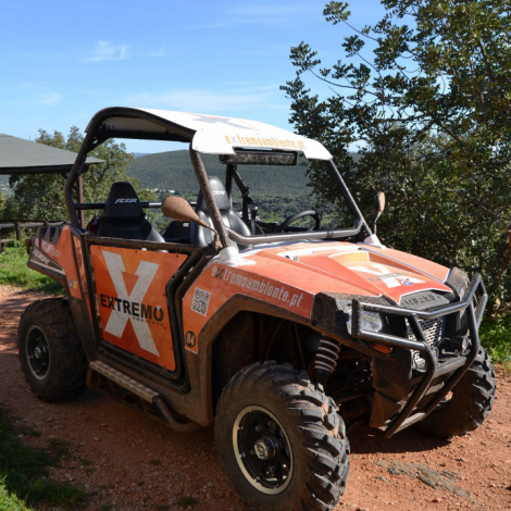 Buggy Adventure Tours 5