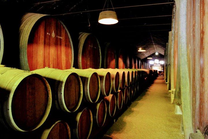 Lisbon Surf & Wine 3