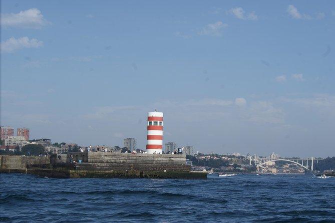 Porto Speedboat Tour 5