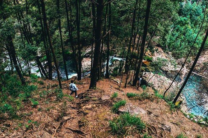 Serra D'Arga Trek, Dive & Dine Like A Local in a Secret Spot 11