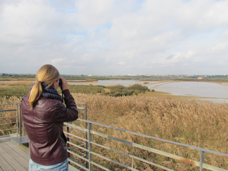 Birdwatching 6