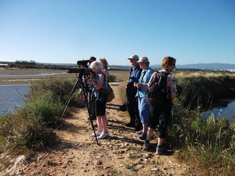 Birdwatching 8