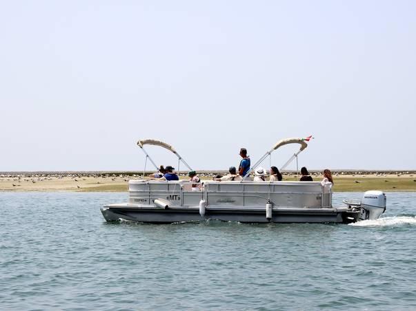 Birdwatching Boat Tour
