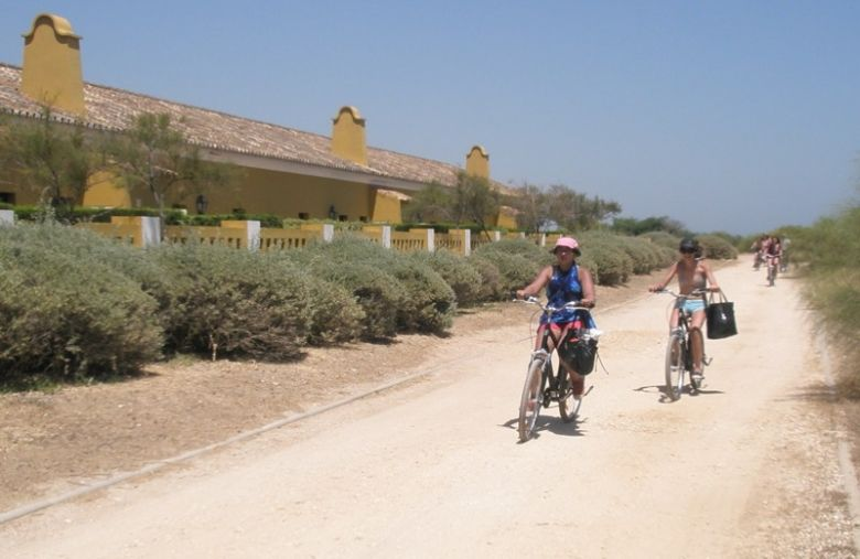Rent a bike Faro 4